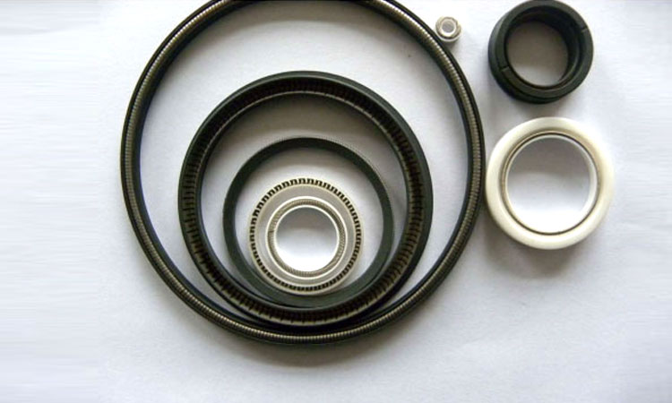 QuanSeaL® Spring Energized PTFE and UHMWPE seals