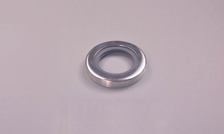 PTFE rotary shaft lip seals (PTFE oil seals)
